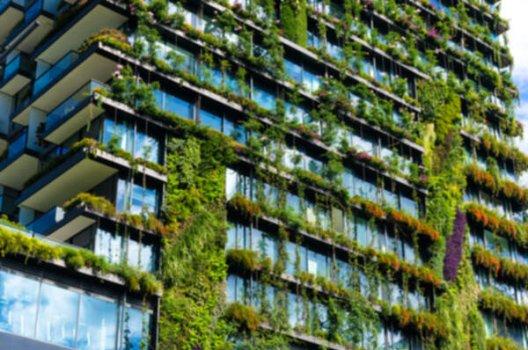 Grønne planter som gror på bygning