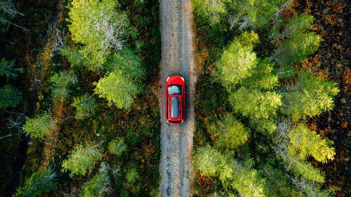 Rød bil som kjører på bilvei gjennom skogen.