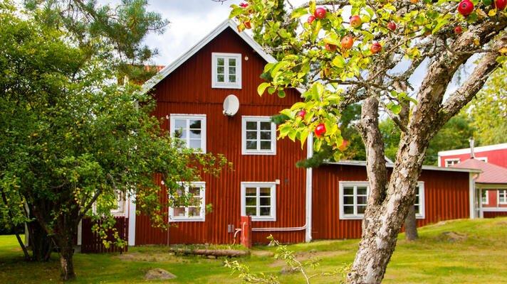 Stort rødt hus med hage og epletrær.