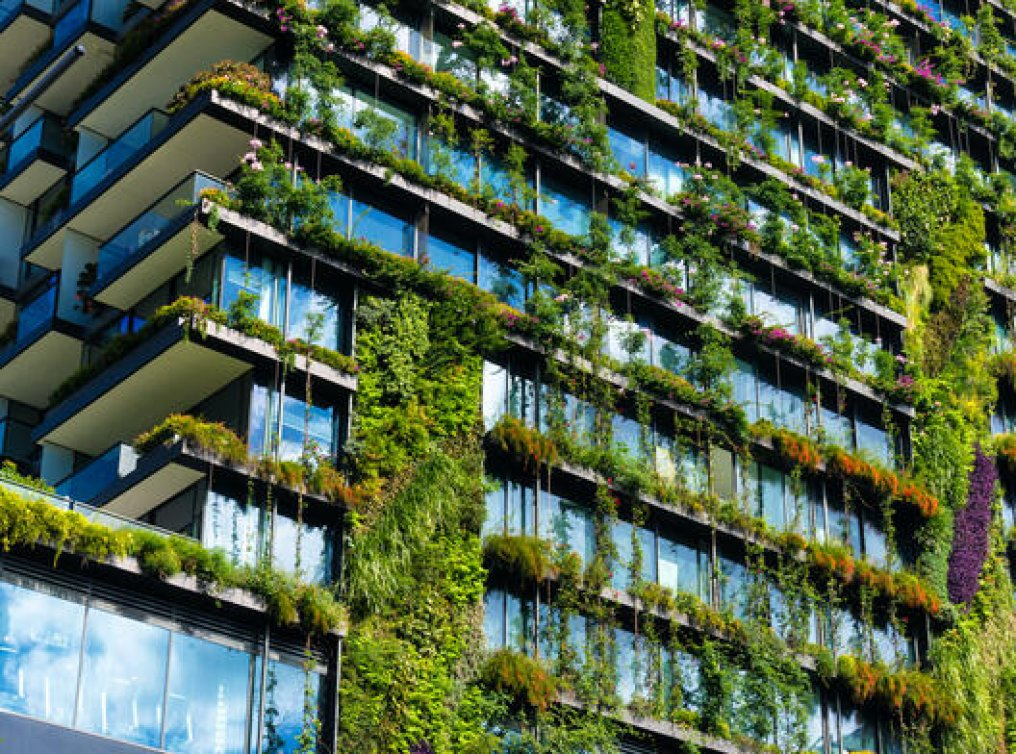 Illustrasjonsfoto: «Green living»